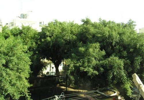 בפרויקט יזמי למכירה במיקום מצויין בקרבת כיכר דיזינגוף המחודש, ברחוב שקט עם המון ירוק.